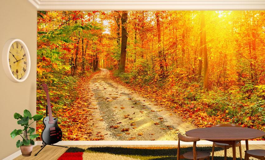 Фотообои-Солнечная-просека-гостиная-Киев-Украина