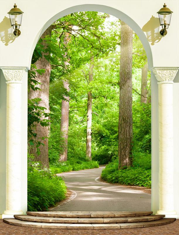 Фотошпалери 3d арка ліс вузький