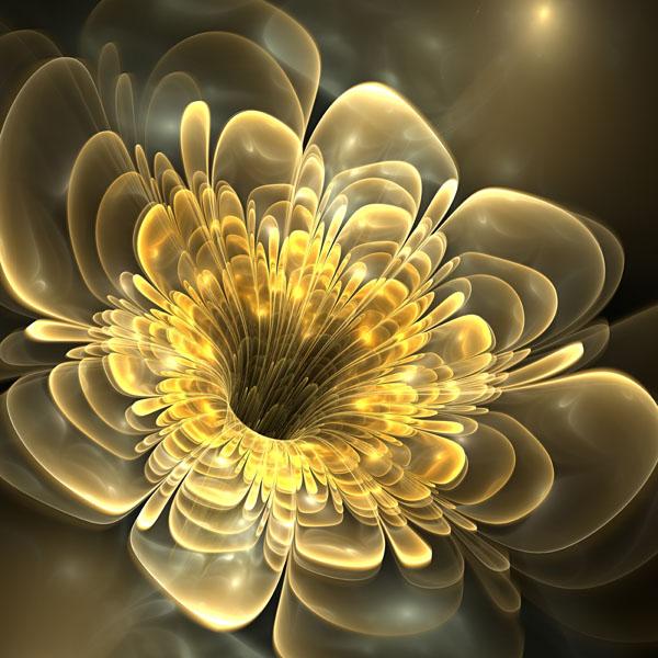 Фотообои 3д уэор фрактал цветы