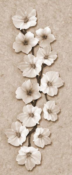 Фотообои 3d цветы орхидеи узкий