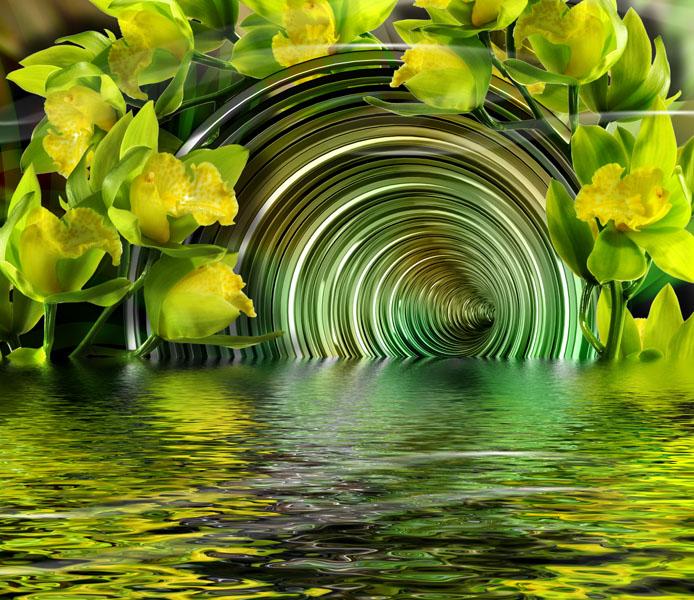 Фотообои 3d спираль цветы отражение