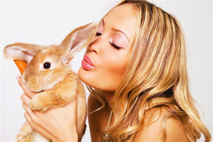 Фотошпалери тварина кролик дівчина кохання