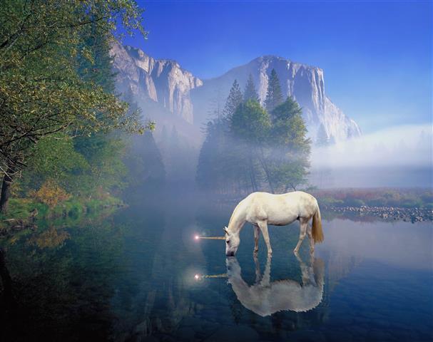Фотообои туман конь конь горы