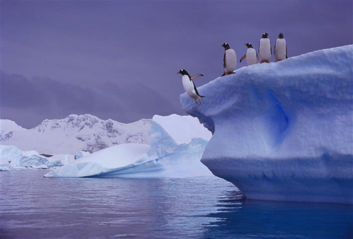 Фотошпалери арктика айсберг айсберг крижина