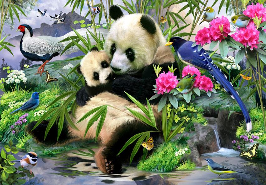 Фотошпалери панда тварина квіти птах