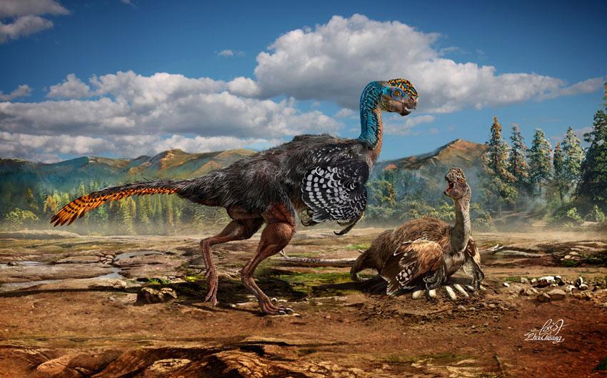 Фотошпалери тварини динозавр птеродактіль фотошпалери
