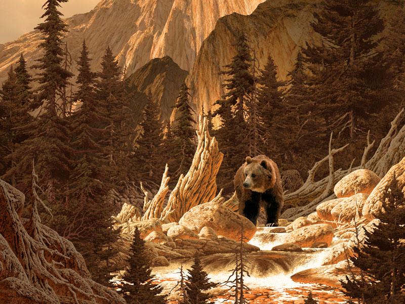 Фотошпалери тварини велмідь ліс гори