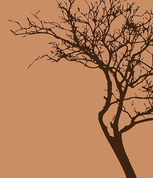 Фотошпалери дерево стиль стиль мінімализм