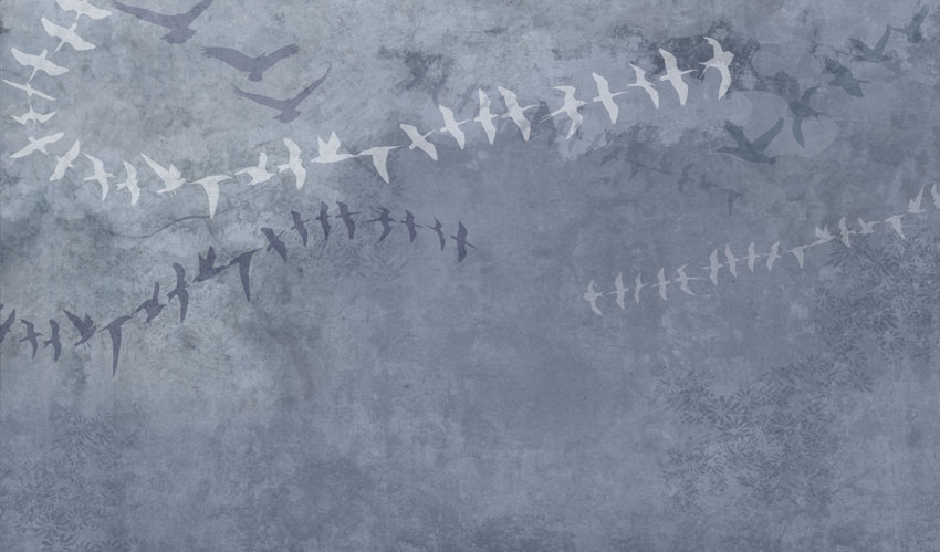 Фотообои абстракция, птица, узор, серый