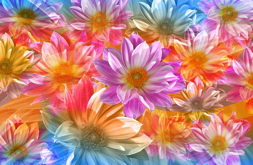 Фотообои абстракция, цветы, арт, фотообои