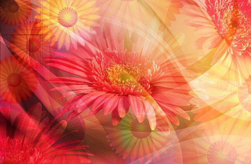 Фотошпалери абстракція квіти арт фотошпалери