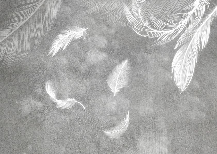 Фотошпалери абстракція пір'їни сірий фон