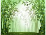 digital mural wallpaper, арт, узор, абстракция, бамбук