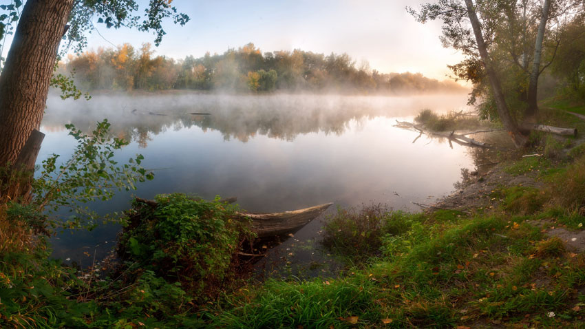 Фотошпалери осінь листя жовтий пейзаж