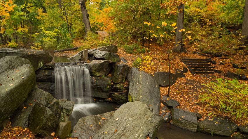 Фотообои осень, листья, желтый, пейзаж