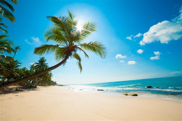 отдых пляж фото