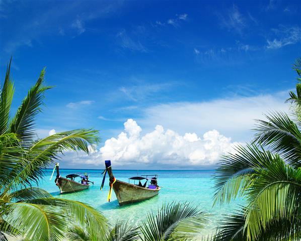 Фотошпалери море пальма човен пляж