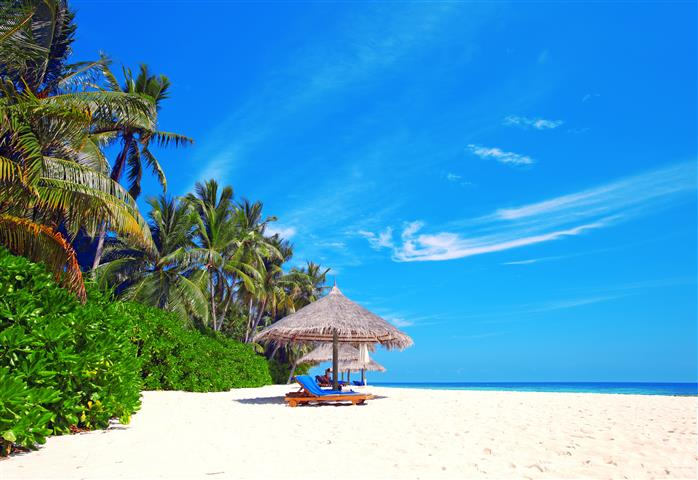 Фотошпалери море пальма океан пляж