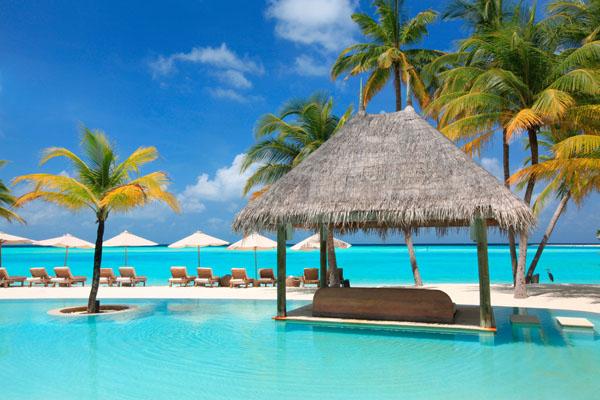 Фотообои море пальма отдых пляж