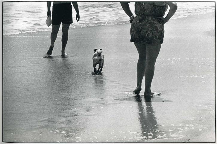 Фотошпалери чорно-білий фотограф фотограф фотошпалери