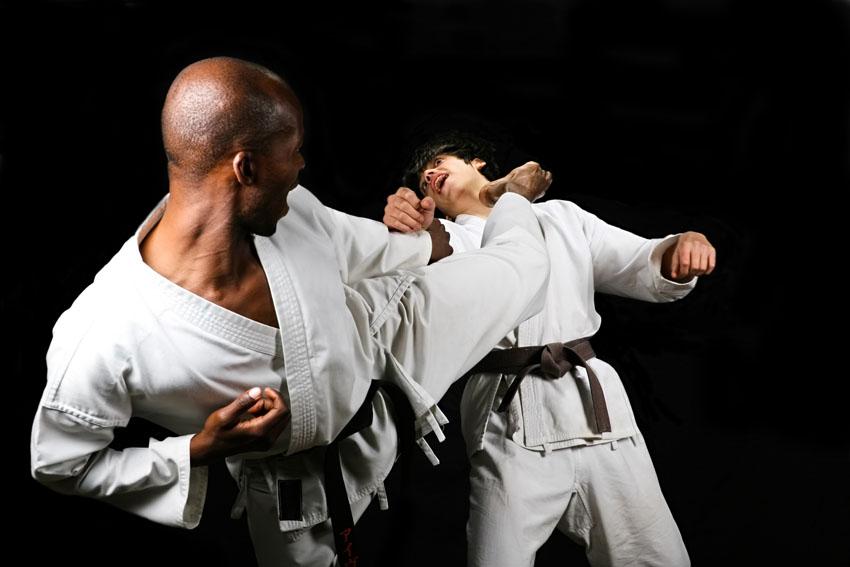 обучающие курсы фото боев карате было никаких сомнений